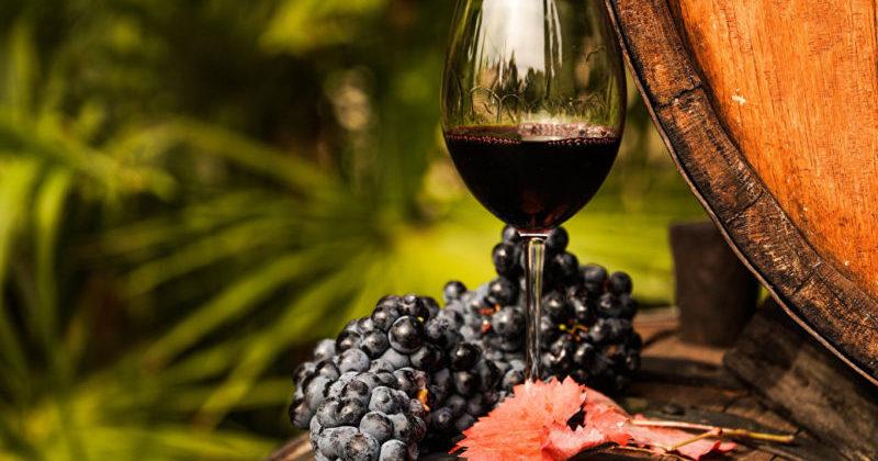 В Крыму открылся бесплатный Музей вина